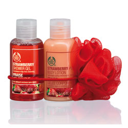 mini duo body shop