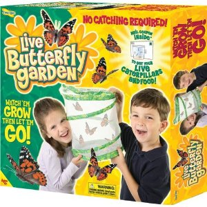 butterfly garden amazon deals