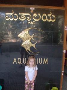 Frugal Foreigner: Aquarium