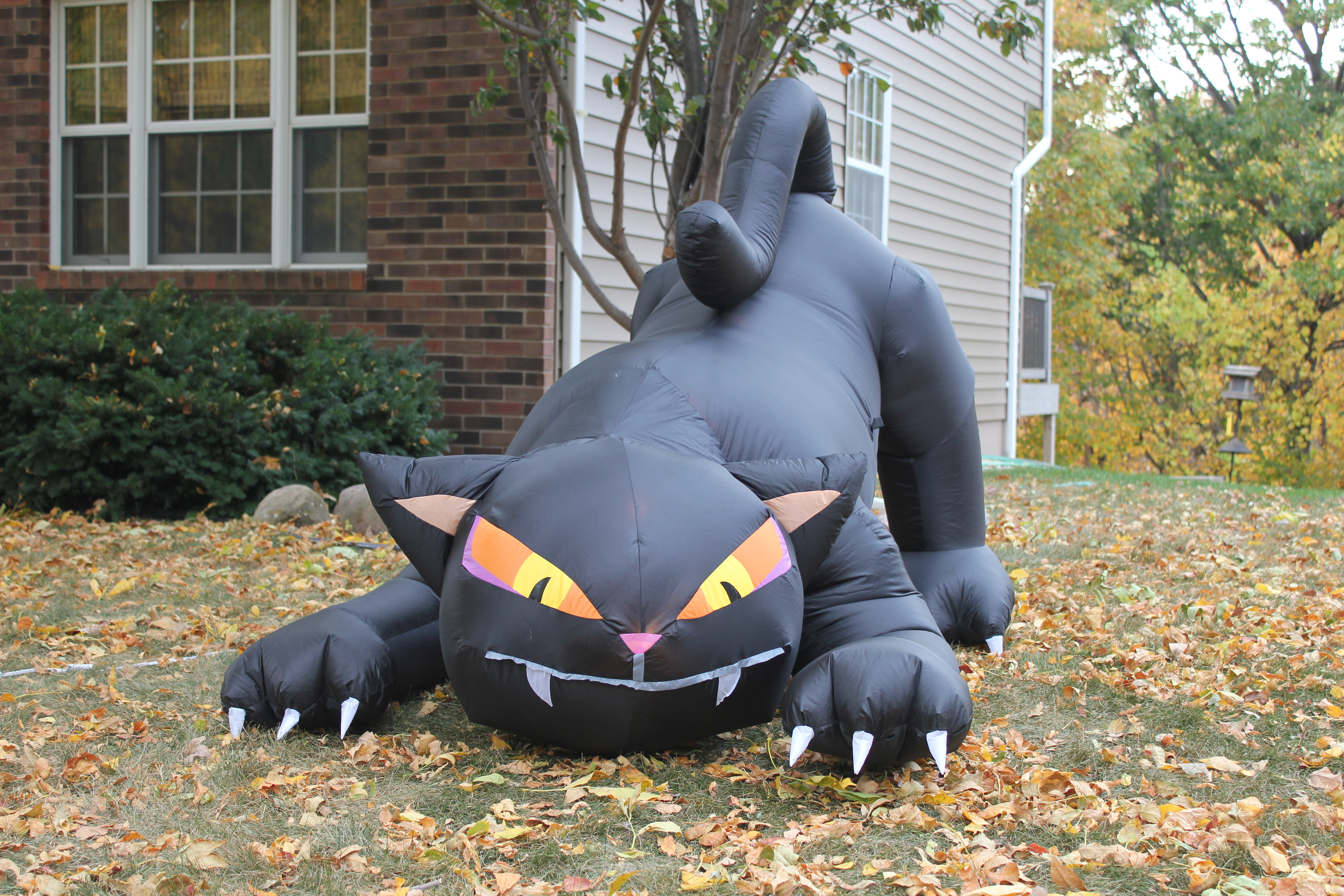 big black inflatable cat