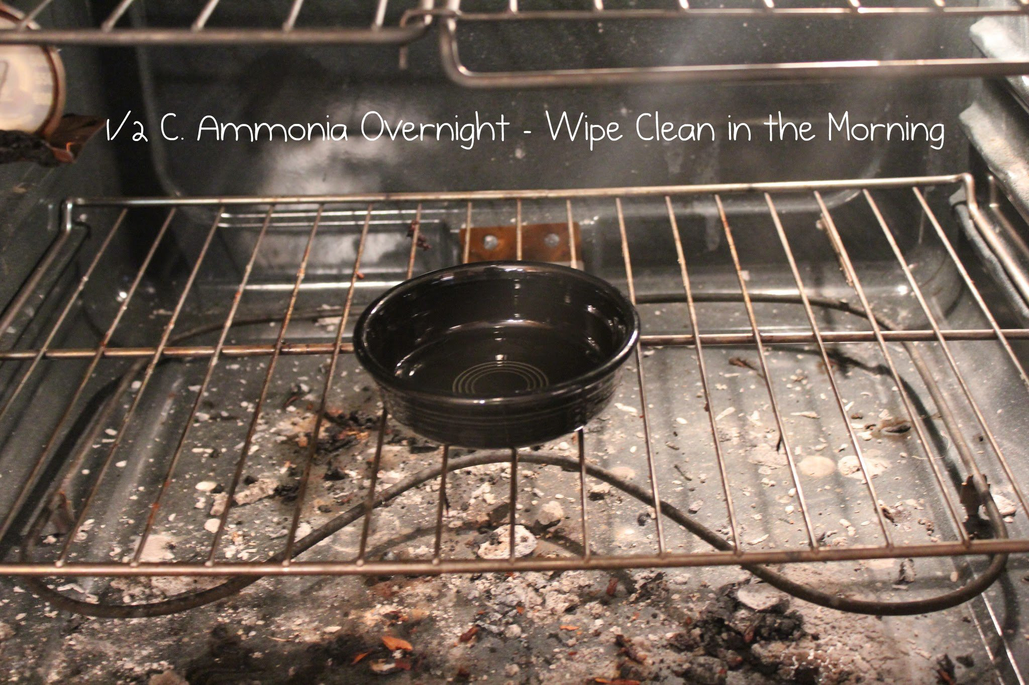 how to professionally clean an oven