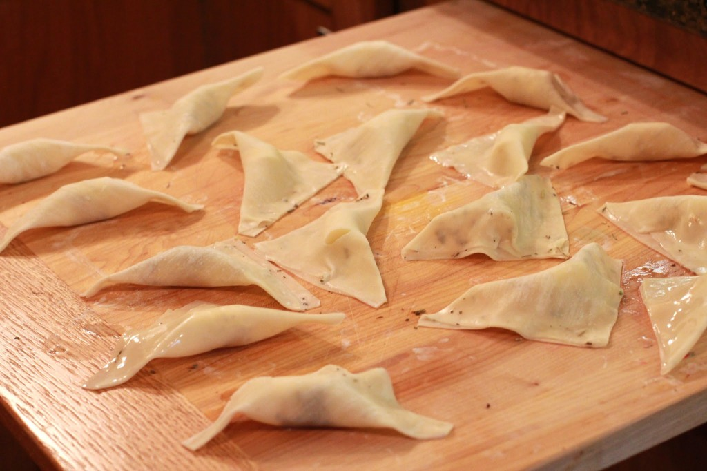 fried mozzarella wontons