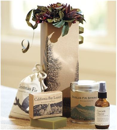 Pottery Barn Gift Set