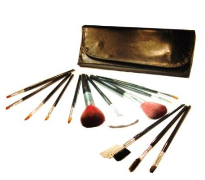 makeup brush set and case