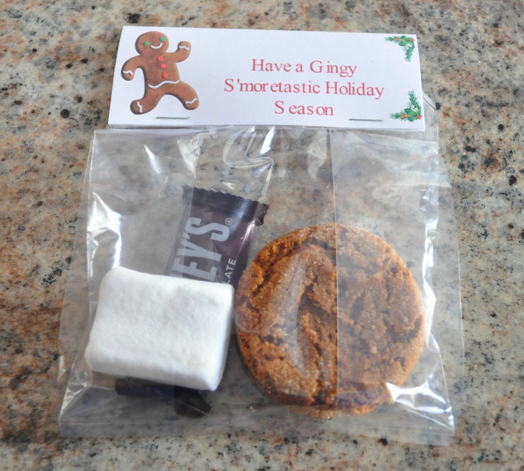 christmas treat bag ideas, gingy smores