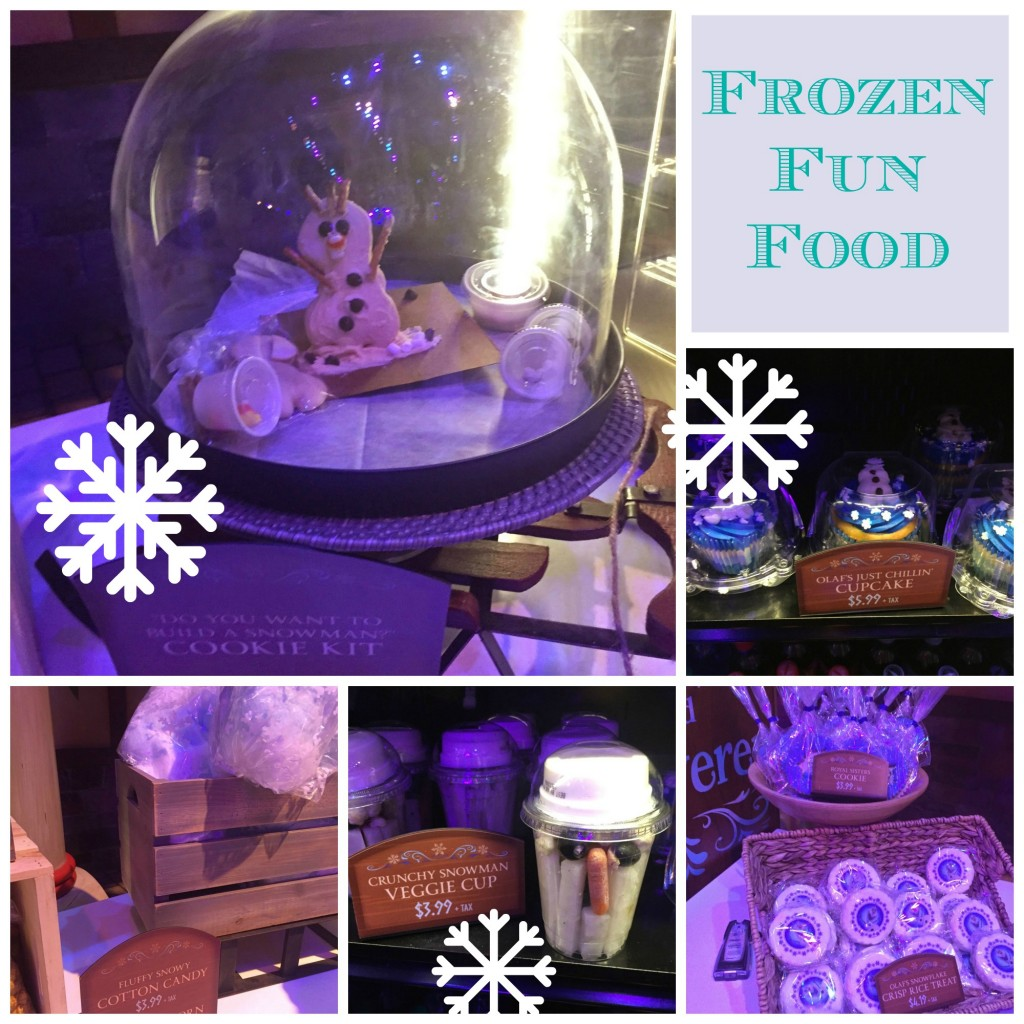 Disneyland Frozen Fun